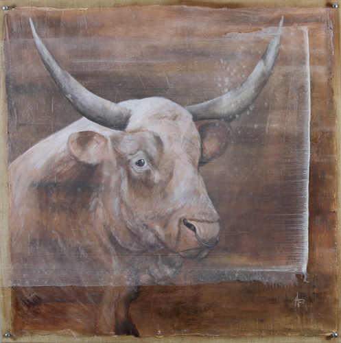 <h1>cattle</h1>oil on canvas/acrylic glass | 120 x 120